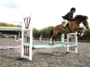 jumping_in_manege