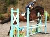 show jumps.jpg