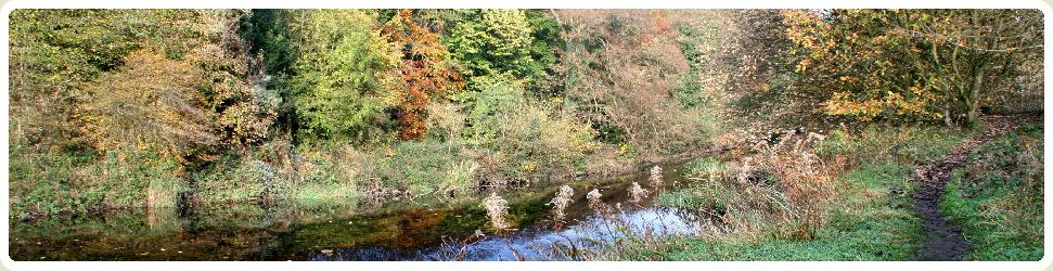 Peak District Riverbank